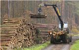 Bauer BF series gear motors are helping to make timber production cleaner, faster and more productive.